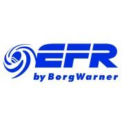 BorgWarner EFR